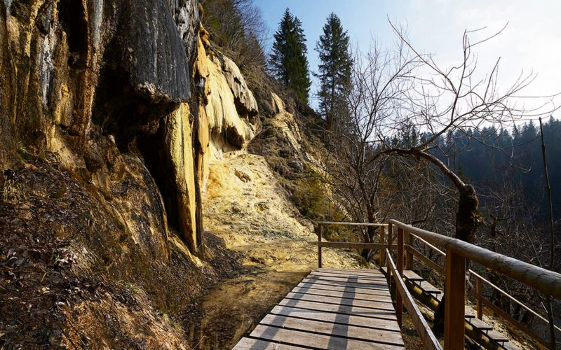 Quelltuff Lingenau